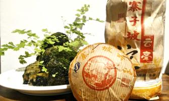【藏茶品飲|07年 寨子坡云毫生沱 】
